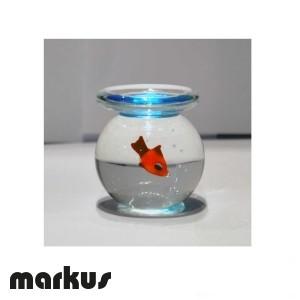 Pescera con pesce rosso misura media