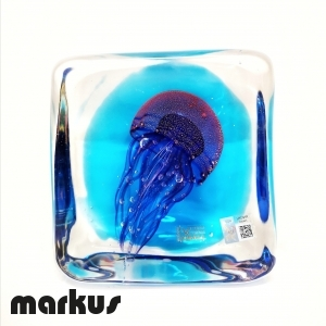 Medusa sommersa piccola