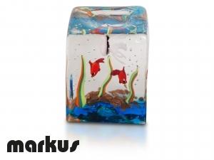 Cubo in vetro con pesci rossi