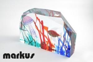 Glass aquarium with fish and jellyfish